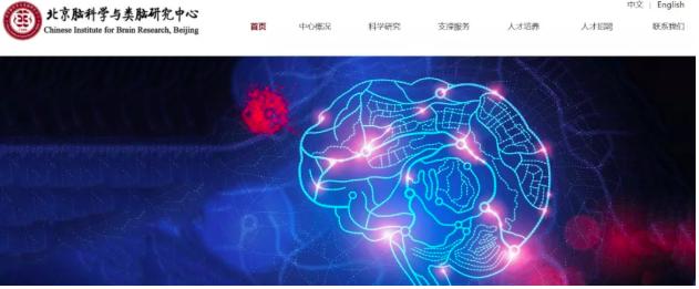 """中国""""脑计划""""的未来""""主战场"""""""