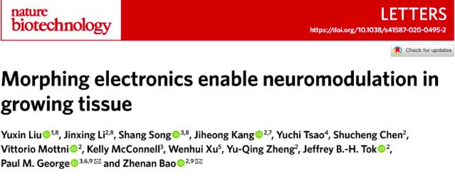 鲍哲南团队开发出调节神经的形变电