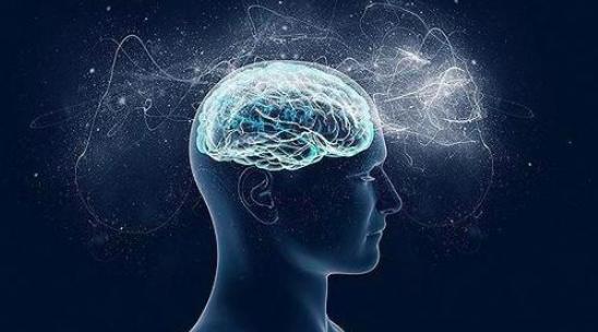 脑科学的三大发展方向