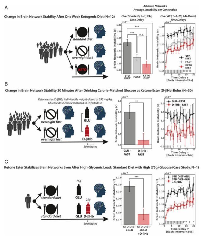 饮食可以调节年轻人大脑网络的稳定性:大脑老