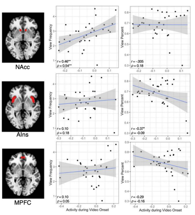 大脑活动预测网络注意力市场中的视