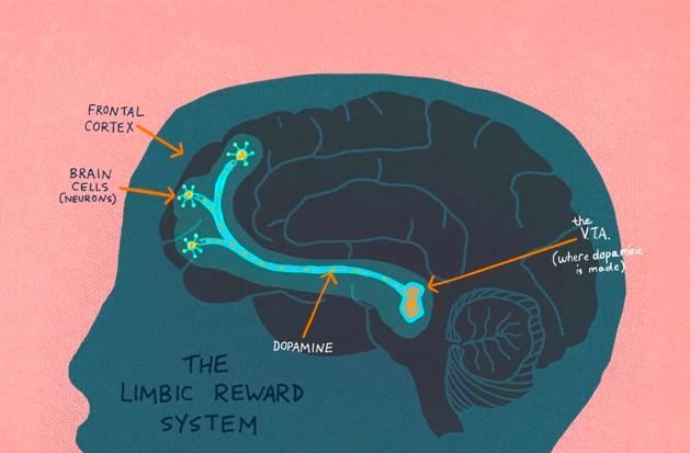 """电子游戏""""成瘾""""和大脑的变化"""