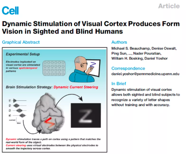 绕过眼睛植入幻觉,科学家成功在盲人脑海中呈
